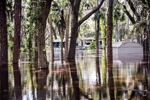 Default Irma