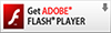 Obtener Adobe Flash Player