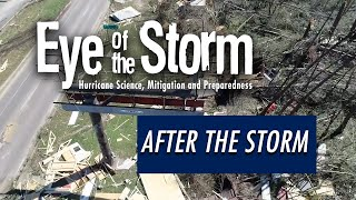 Go YouTube: After the Storm